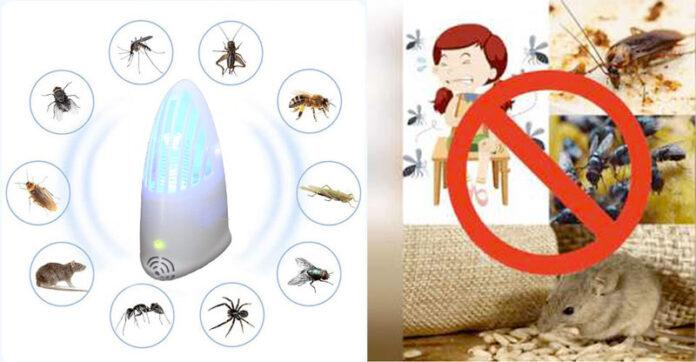 Invictus repellente insetti roditori